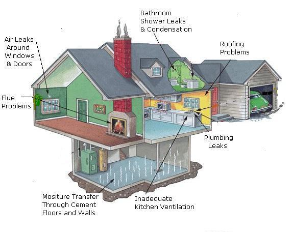 A diagram of various causes for mold in a typical home.